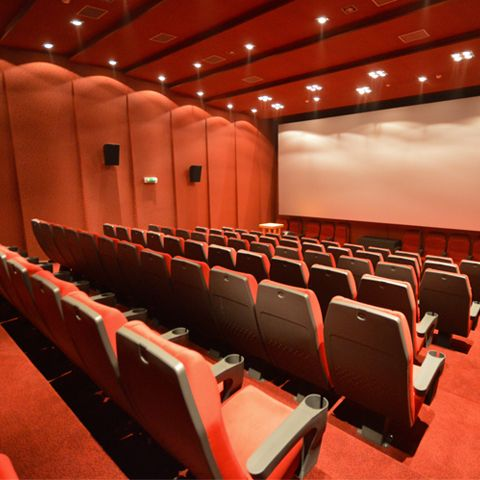Cinematograf Bela Lugosi, Lugoj